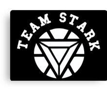 Team Stark Civil War Canvas Print