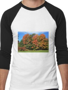 Tress  in Fall colours.  Men's Baseball ¾ T-Shirt