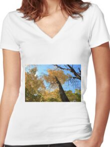 Fall coloured forest.  Women's Fitted V-Neck T-Shirt