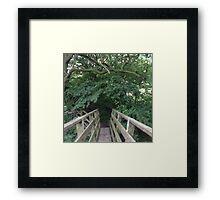 Forrest Bridge Framed Print