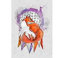 A fox among feathers Photographic Print