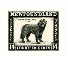 Newfoundland postage stamp, 1930, Newfoundland Dog Art Print