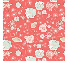 Peach Mint flowers  Photographic Print