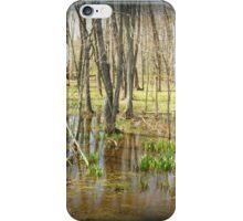 Swamp Thing iPhone Case/Skin