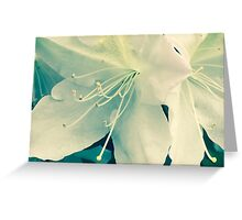 Azalea I Atlanta, GA. Greeting Card