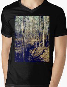 Fall Forest Mens V-Neck T-Shirt