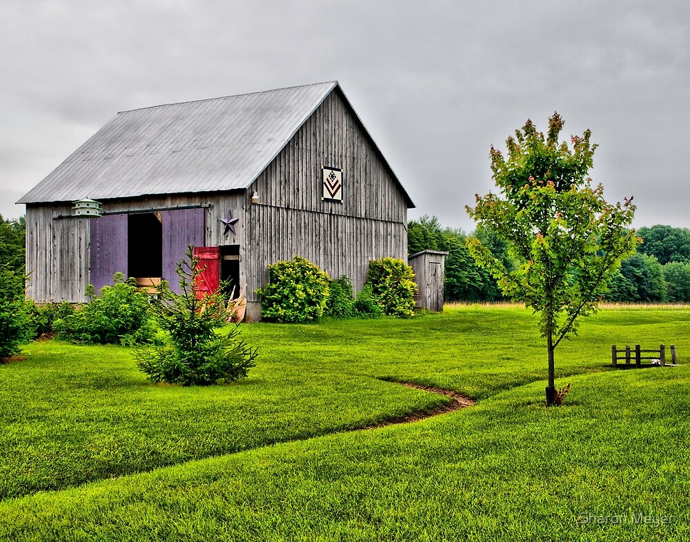 Barn with the Red Door by Sharon Meyer