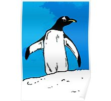Penguin with blue sky Poster