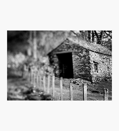 Dissolve Photographic Print