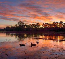lake sunrise  by warren dacey