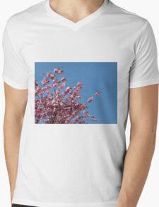 Cherry Blossoms #1 Mens V-Neck T-Shirt