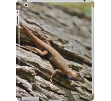 A Lizard on a Log in the Forest on a Spring Day in Georgia iPad Case/Skin