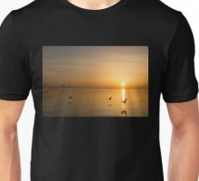 Wings at Sunrise - Toronto Skyline With Flying Geese Unisex T-Shirt