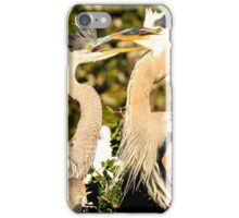 Great Blue Herons Adult and Young iPhone Case/Skin