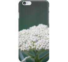 Dreamy Flower iPhone Case/Skin
