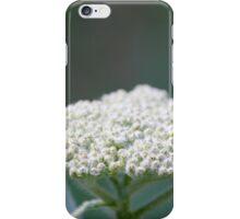 Dreamy Flower 2 iPhone Case/Skin