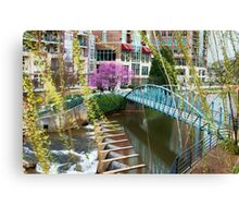 Spring on the Reedy Canvas Print
