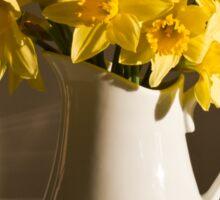 Daffodil Filled Jug Sticker