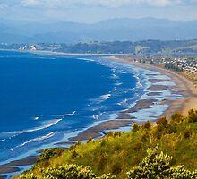 Ohope Beach Overlook by Barbara  Brown