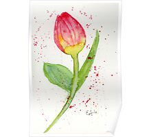 Blooming Tulip - Watercolor Painting Poster
