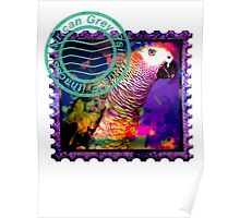 AFRICAN GREY PSYCHEDELIC POSTAGE STAMP Poster