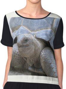 Giant Turtle Chiffon Top