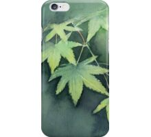Japanese Maple Watercolor Painting iPhone Case/Skin