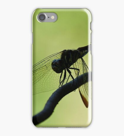 Dragon on a Wire iPhone Case/Skin
