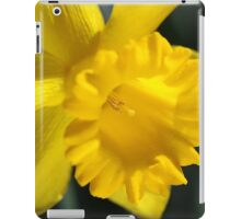 Radiant Yellow Daffodil  iPad Case/Skin