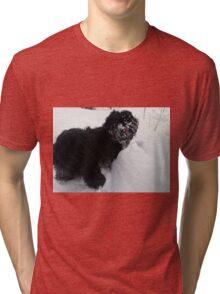 shih tzu tongue out Tri-blend T-Shirt