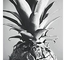 Silver Pineapple Photographic Print