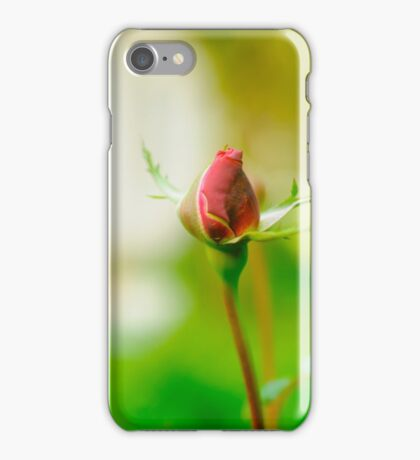 Perfect Red Rose bud with lush green background  iPhone Case/Skin