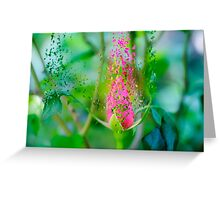 Digitally manipulated exploding red Rose bud Greeting Card