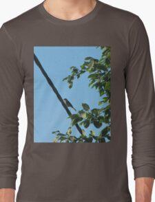 bird bird is the word :) Long Sleeve T-Shirt