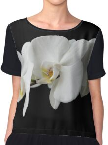 The branch of white orchid isolated  Chiffon Top
