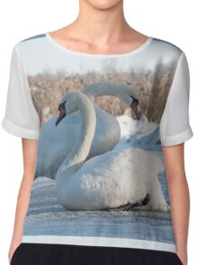 two white swans sitting on the ice Chiffon Top