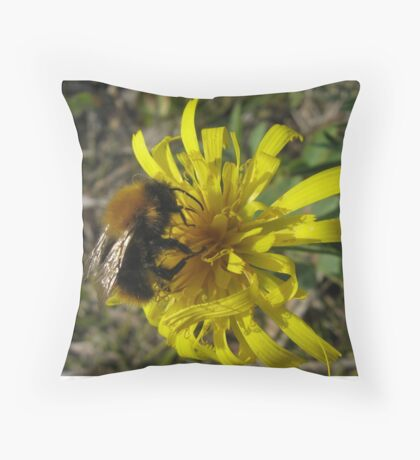 Bumblebee on the loose Throw Pillow