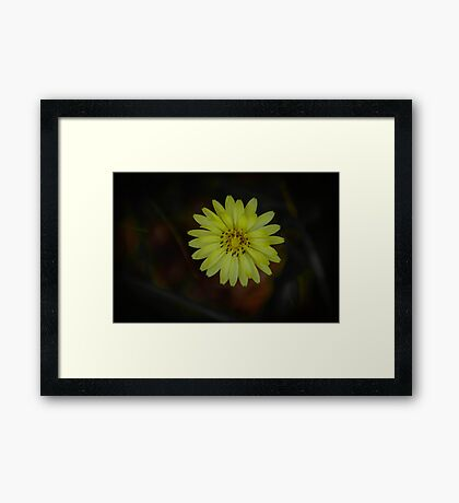 Just Wild Framed Print
