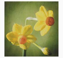 Heralding Spring Kids Tee