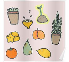 Fruit and Plants Poster