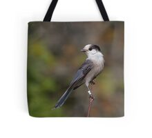 Gray Jay in Algonquin Park Tote Bag