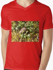 Nature works Mens V-Neck T-Shirt