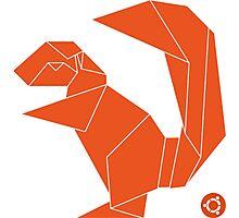 Ubuntu Xenial Xerus Photographic Print