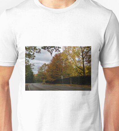 Autumn in Mt Macedon Unisex T-Shirt