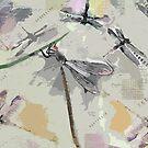 Dragonflies - Grayish by Betsy  Seeton