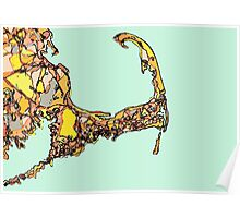 Abstract Map of Cape Cod Poster