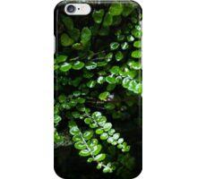 Wet fern iPhone Case/Skin