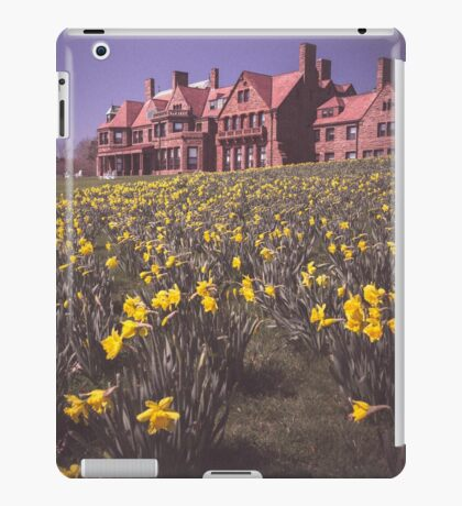 Daffodils' Spread iPad Case/Skin