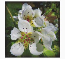 Peach blossom Kids Tee