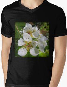Peach blossom Mens V-Neck T-Shirt